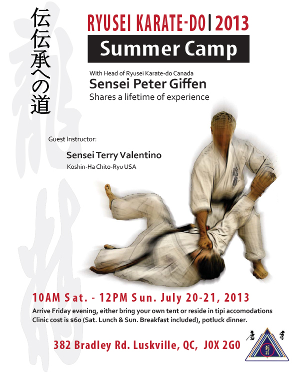 Ryusei Karate 2013 summer camp